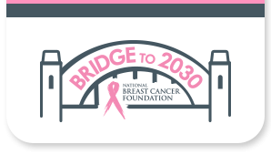 Bridge to 2030