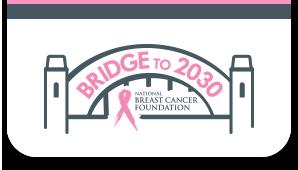 Bridge to 2030